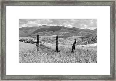 Hollenbeck Fence Posts Framed Print