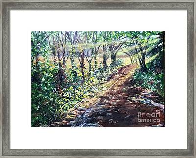 Hollis Road With Puddles Framed Print
