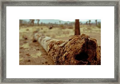 Hollow Lines Framed Print