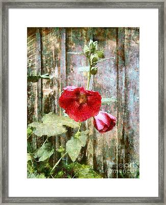 Framed Print featuring the photograph Hollyhock On Weathered Wood - Remember The Days by Janine Riley