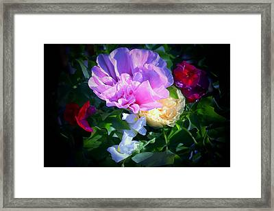 Hollyhocks And Snapdragons  Framed Print by Marjorie Imbeau