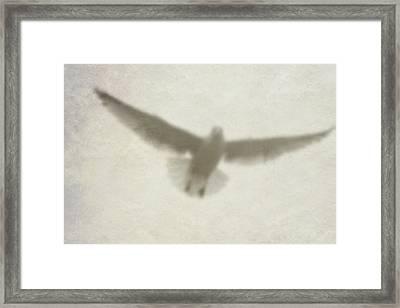 Holy Spirit Framed Print by Vienne Rea