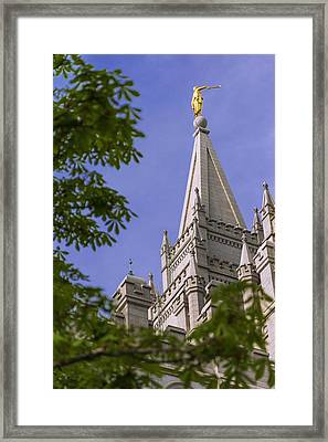 Holy Temple Framed Print by Chad Dutson