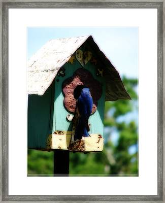 Home Again Framed Print by Laura Brightwood