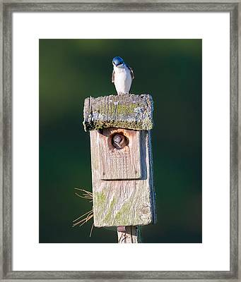 Home Framed Print by Bill Wakeley