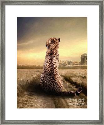 Framed Print featuring the photograph Home by Christine Sponchia