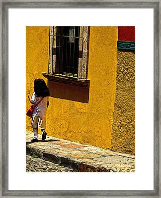 Home For Lunch Framed Print