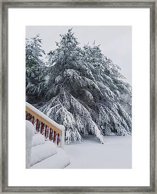 Home For The Blizzard Framed Print