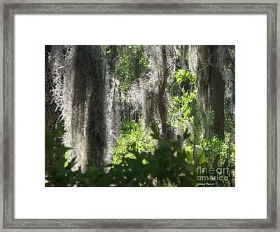 Home Framed Print by Greg Patzer