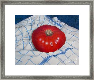 Home Grown Framed Print by Pamela Clements