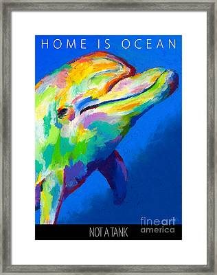 Framed Print featuring the painting Home Is Ocean by Stephen Anderson