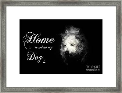 Home Is Where My Dog Is Framed Print by Clare Bevan