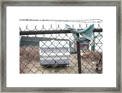 Home Is Where You Hang Your... Framed Print by Kreddible Trout