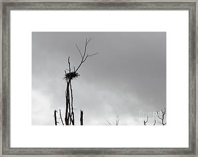 Home Framed Print by Josh Baldo