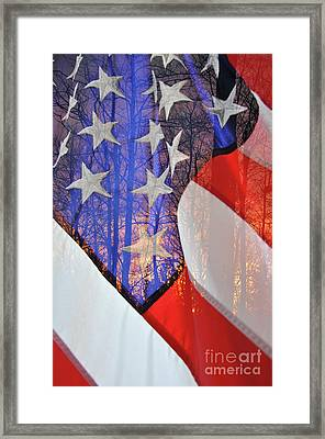 Framed Print featuring the photograph Home Of The Free by Gina Savage