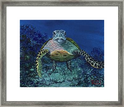 Framed Print featuring the painting Home Of The Honu by Darice Machel McGuire