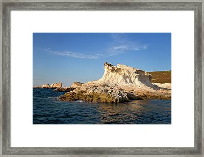 Home Of The Sirens Framed Print by Rico Besserdich