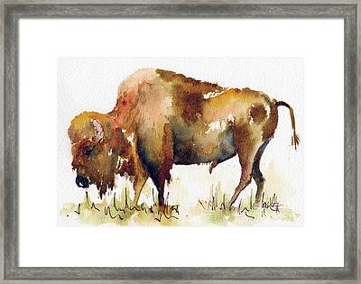Framed Print featuring the painting Home On The Range Buffalo by Pat Katz