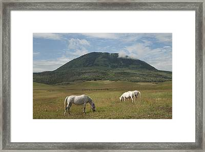 Framed Print featuring the photograph Home On The Range by Daniel Hebard