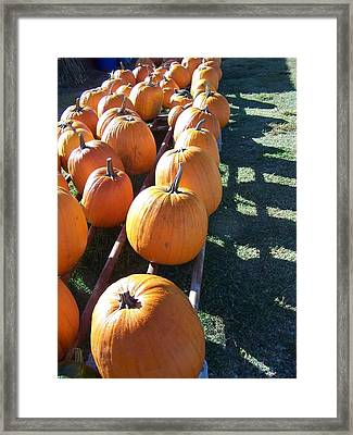 Framed Print featuring the photograph Homeless by Sandy Collier
