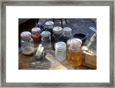 Homemade Framed Print by David Lee Thompson