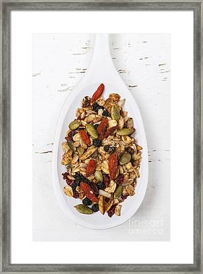 Homemade Granola In Spoon Framed Print