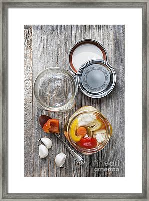 Homemade Preserved Vegetables Framed Print