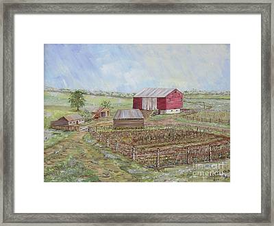Homeplace - The Barn And Vegetable Garden Framed Print by Judith Espinoza