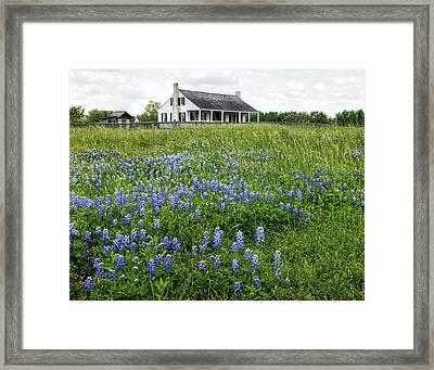Homestead In East Texas Framed Print