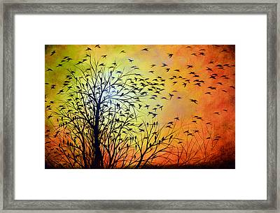 Homeward Framed Print by Amy Giacomelli