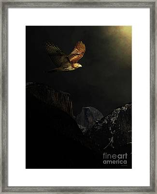Homeward Bound Framed Print by Wingsdomain Art and Photography