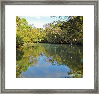 Homosassa River Framed Print