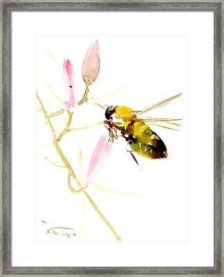Honey Bee And Pink Flower Framed Print