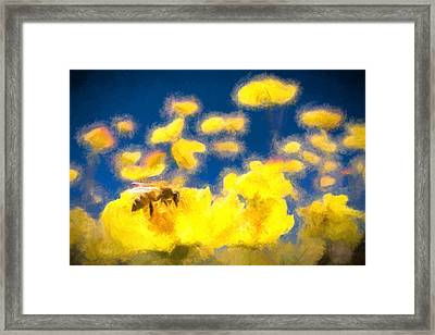 Honey Bee Mountain Daisy Impressionism Study 1 Framed Print by Scott Campbell