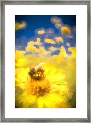 Honey Bee Mountain Daisy Impressionism Study 2 Framed Print by Scott Campbell