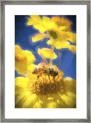 Honey Bee Mountain Daisy Impressionism Study 3 Framed Print by Scott Campbell