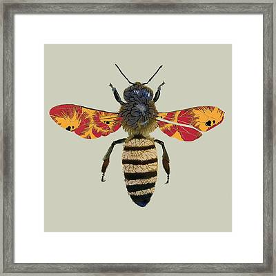 Honey Bee Framed Print by Sarah Hough