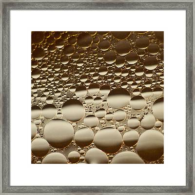 Framed Print featuring the photograph Honey Moons by Tom Vaughan
