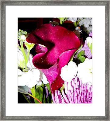 Honeybee Heaven Framed Print by Leslie Revels
