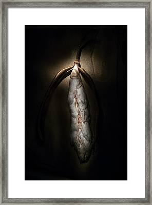 Framed Print featuring the photograph Hong Kong Orchid Seed Pod #3 by Lou Novick