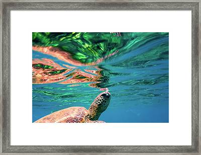 Hono Abstract Framed Print