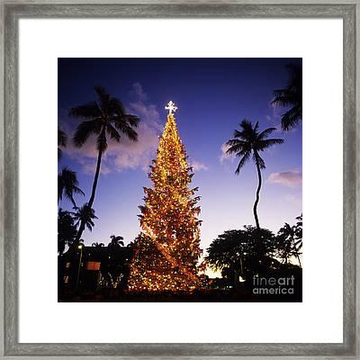 Honolulu Christmas Framed Print by Kyle Rothenborg - Printscapes