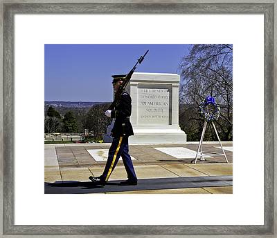 Honor Guard Framed Print by Rebecca Snyder
