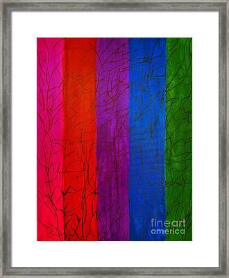 Honor The Rainbow Framed Print