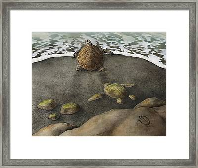 Honu Beach Framed Print by Kirsten Carlson