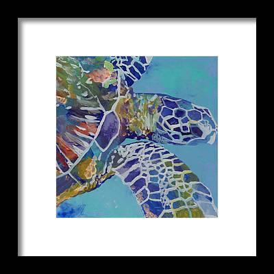 Honu Framed Prints