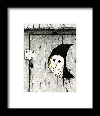 Barn Owl Framed Prints