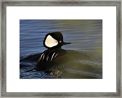 Hooded M Framed Print
