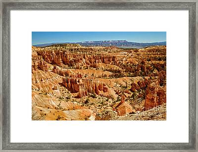 Hoodoos At Sunset Point Framed Print by Robert Bales