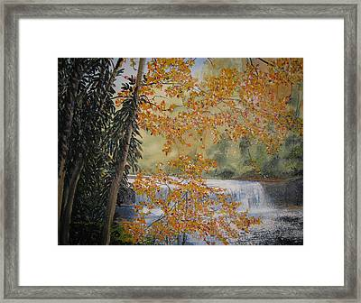 Hooker Falls Framed Print by Shirley Braithwaite Hunt